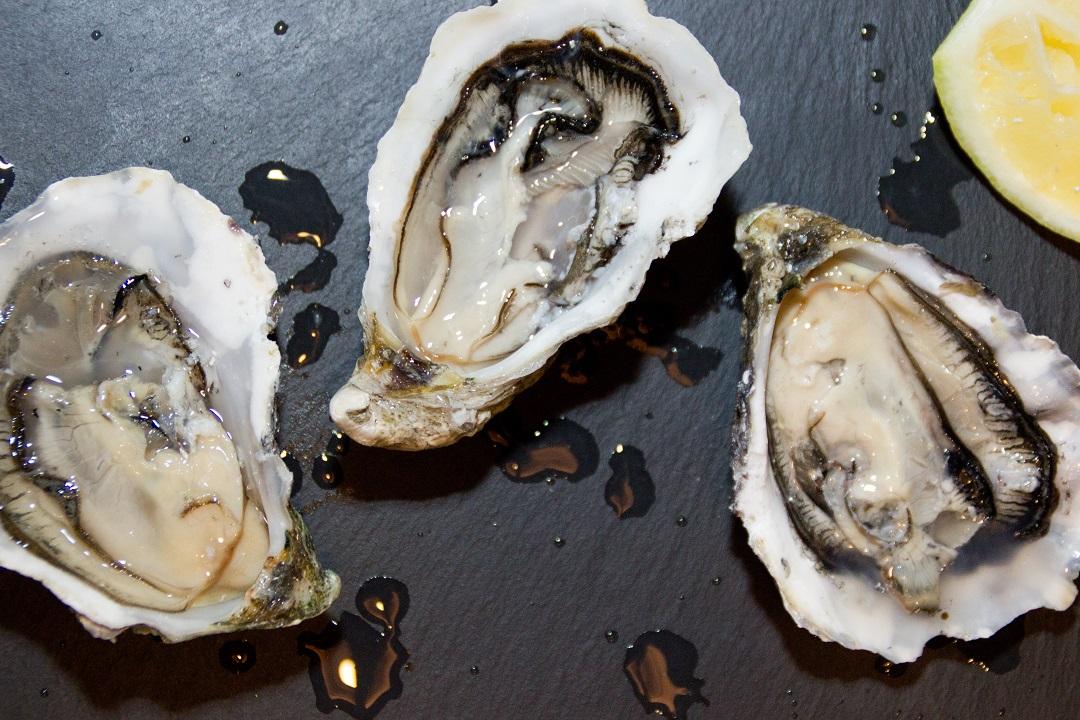 mariscos-y-ostras-2